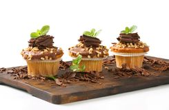 Hazelnut muffins Stock Image