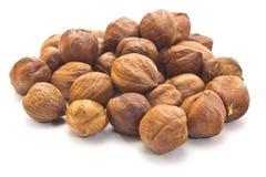 Hazelnut nasiona Zdjęcie Royalty Free