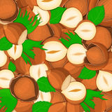 The hazelnut nut background Closely spaced delicious  vector illustration Nuts pattern walnut fruit in the shell whole Royalty Free Stock Photos