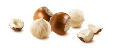 Nut Group 11