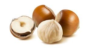 Hazelnut nut group 1 peeled off isolated on white background Royalty Free Stock Photo