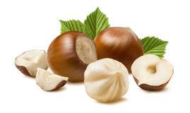 Free Hazelnut Nut Many Leaves Isolated On White Background Stock Images - 71071094