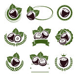 Hazelnut nuts labels and elements set. Vector Stock Photos