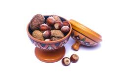 Hazelnut orzech włoski Zdjęcia Stock