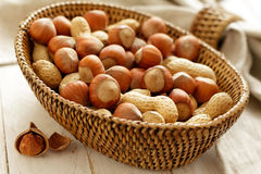 Hazelnut and peanut Stock Images