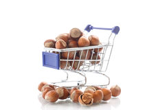 Hazelnut Royalty Free Stock Images