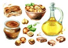 Hazelnut products set. Watercolor  illustration Stock Photography