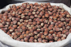Hazelnut sack Stock Images
