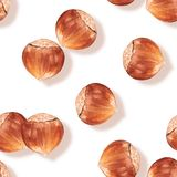 Hazelnut. Seamless pattern with nuts Stock Photography