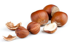 Hazelnut Shell Royalty Free Stock Photography