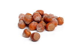 Hazelnut in Shell Royalty Free Stock Photos