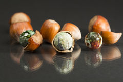 Hazelnut shell with brown - green faceted agate Stock Photography