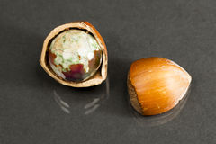 Hazelnut shell with brown - green faceted agate Royalty Free Stock Photos