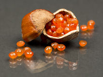 Hazelnut shell with carnelian faceted gems Royalty Free Stock Photos