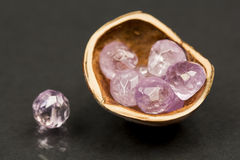 Hazelnut shell with faceted amethyst gems Stock Photo
