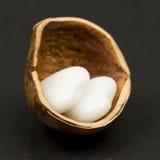 Hazelnut skorupa z serce kształtnym agatem Obrazy Stock