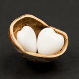 Hazelnut skorupa z serce kształtnym agatem Zdjęcie Stock