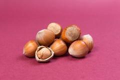 Hazelnut stos na różowej teksturze Zdjęcie Stock