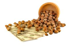 Hazelnut Turkish hazel to a wooden bowl. The concept of the grow. Th of the transformation of hazelnut nuts into money dollars. Isolate on white background royalty free stock photo