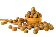 Hazelnut Turkish hazel to a wooden bowl. The concept of the grow. Th of the transformation of hazelnut nuts into money dollars. Isolate on white background royalty free stock photography