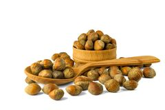 Hazelnut Turkish hazel to a wooden bowl. The concept of the grow. Th of the transformation of hazelnut nuts into money dollars. Isolate on white background stock images