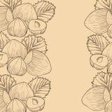 Hazelnut Royalty Free Stock Images