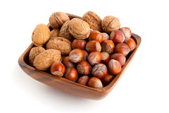 Hazelnut and walnut Stock Photos