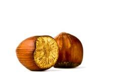 Hazelnut on a white background royalty free stock images