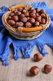 Hazelnut Royalty Free Stock Photo