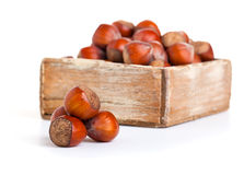 Hazelnut in the wooden box. Stock Photos