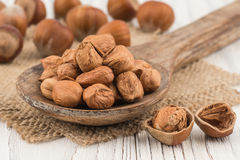 Hazelnut in wooden spoon ins old white wooden table. Royalty Free Stock Image