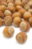 Hazelnuts 1 Royalty Free Stock Photos