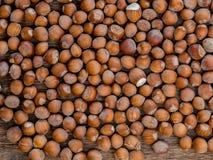 Hazelnuts obrazy stock