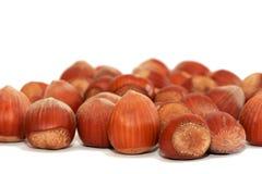 Hazelnuts. Isolated on white background Stock Image