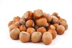 Hazelnuts. Pile of hazelnuts isolated on white Stock Photos
