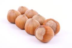 Hazelnuts. Pile of hazelnuts isolated on white Royalty Free Stock Images