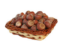 Hazelnuts. Some fresh hazelnuts captured on white stock photography