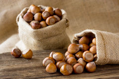 Hazelnuts. Ripe hazelnuts in a bags Royalty Free Stock Photography