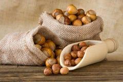 Hazelnuts. Ripe hazelnuts in a bags Royalty Free Stock Image