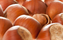 Hazelnuts Stock Photos