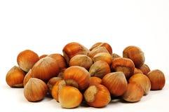 Hazelnuts Stock Image