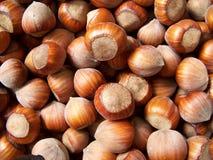 Free Hazelnuts Royalty Free Stock Images - 22805519