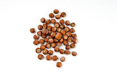 Hazelnuts. Whole hazelnuts over the white background Stock Images