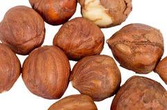 Hazelnuts. Isolated on White Background Stock Photo