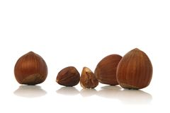 Hazelnuts. Isolated over white background Royalty Free Stock Images