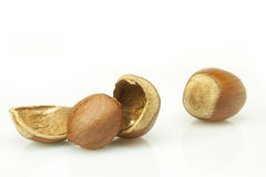 Hazelnuts. Shelled hazelnuts and peanuts on white background Stock Images