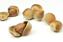 Hazelnuts. Shelled hazelnuts and peanuts on white background Royalty Free Stock Photo
