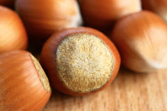 Hazelnuts. On a wooden background Stock Image