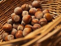 Hazelnuts   fotografia stock