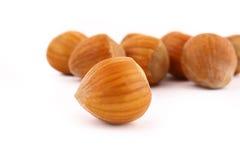 Free Hazelnuts Royalty Free Stock Image - 4147896